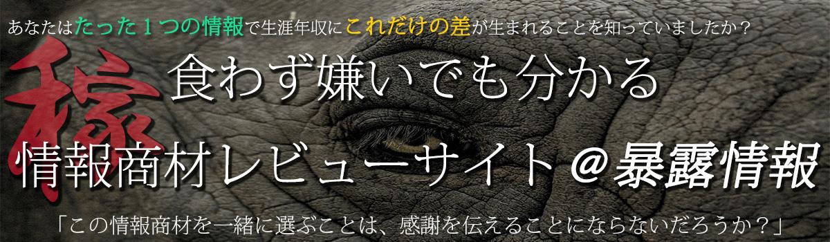 食わず嫌いでも分かる情報商材レビューサイト@暴露情報